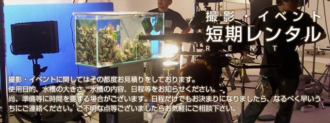 撮影・イベント・短期レンタル水槽設置事例