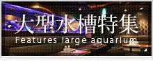 千葉アクアガーデンの大型水槽特集