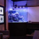 神奈川県 料亭の特殊海水魚水槽